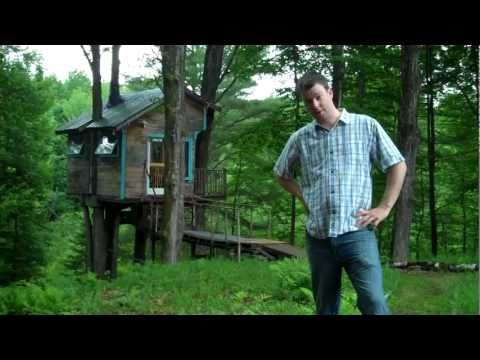 Tiny house/cabin in the trees-The fern forest treehouse- (Relaxshacks.com/treefort
