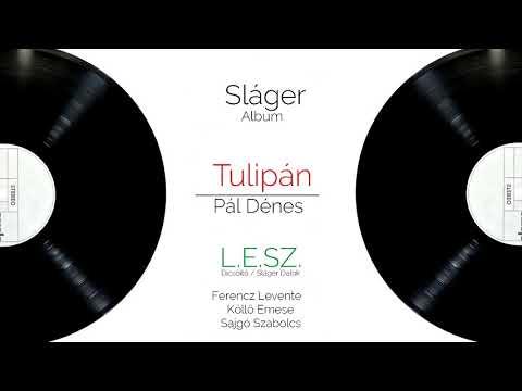 Pál Dénes - Tulipán | L.E.SZ Feldolgozás