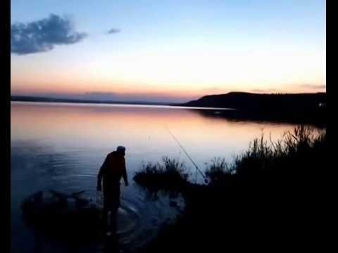ловля судака в сенгилее