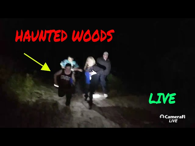 """MIDNIGHT IN THE HAUNTED FOREST """"LIVE STREAM"""" COYOTES STALKING US"""