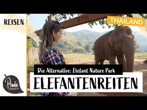 Elefantenreiten: Eine Alternative ist der Elefant Nature Park