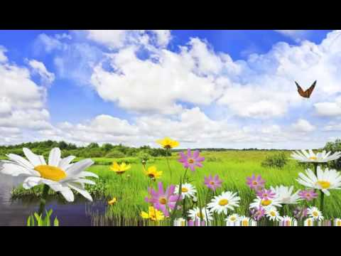 paisajes naturales para fondo de pantalla del monitor - YouTube