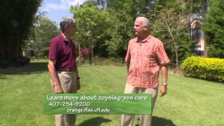 Central Florida Gardening-Zoysiagrass