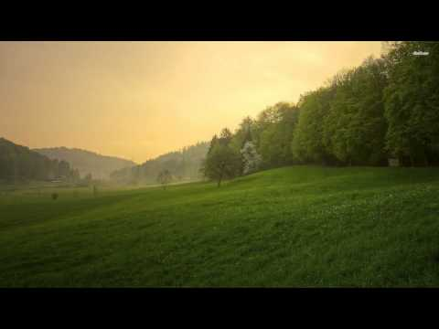 Andrew Morris - Dust