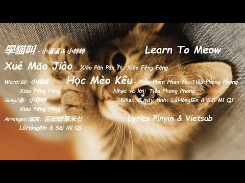 Learn To Meow (學貓叫/Xue Mao Jiao) - Xiao Pan Pan ft. Xiao Feng Feng (小潘潘 ft. 小峰峰)