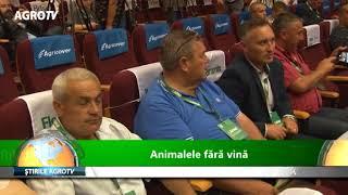 animalele fara vina 24 05 2018