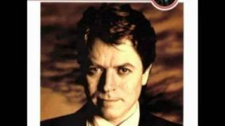 Robert Palmer - I Didnt Mean To Turn You On