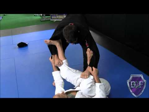 DRILLTOFLOW.COM ATTACKS AND SWEEP FROM SPIDER GUARD SETUP [Elliot Bayev] Image 1