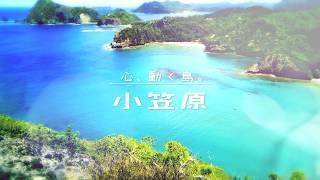 「心、動く島。」 – 小笠原諸島プロモーションムービー
