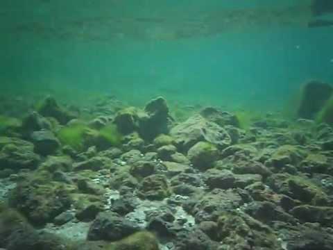 Kodak Easyshare Sport C123 Underwater demostration 6