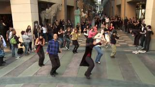 Flash Mob - Michael Jackson&#039;s Thriller vs Twilight