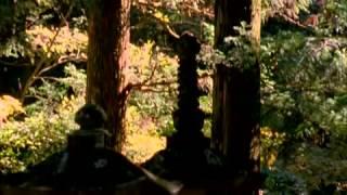 The Will of the Shogun (Documentary)