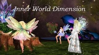 SLDC: Dimensions 10-11: Inner World