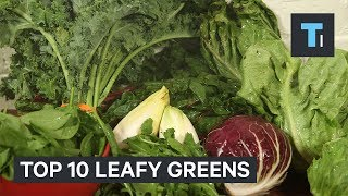 10 Healthiest Leafy Greens You Should Be Putting In Your Salad
