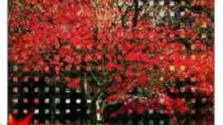 Leaves Of Autumn 秋葉