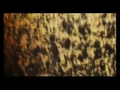 Nibiru 2012 - The end of the World HD
