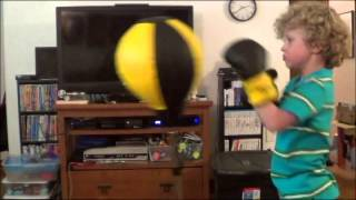 Velocity Boxing Children's Reflex Punching Bag and Gloves