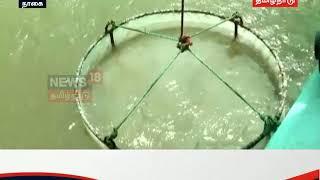 நாகை: புதிய முறையில் இறால் வளர்ப்பு... உற்பத்தி செலவு குறைவு...