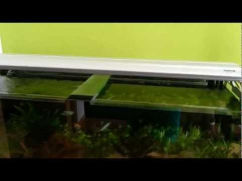 4AQUA Osvětlení pro miniakvária 3x54W T5 | Rostlinna-akvaria.cz