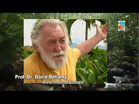 Discover Sabah Borneo Malaysia