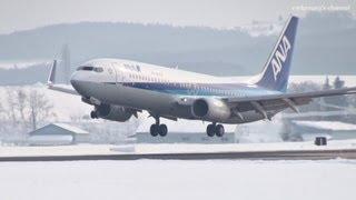 旭川空港 Air Nippon (ANK/ANA) Boeing 737-800 JA65AN 2012.1.29