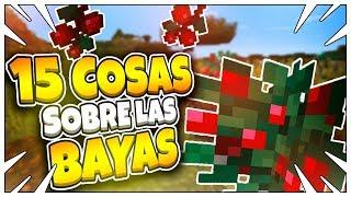 👉15 COSAS QUE DEBES SABER SOBRE LAS BAYAS👈  Minecraft PE