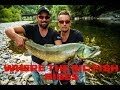 WHERE THE BIG FISH RISES, Part one Slovenia FULL MOVIE ( Fly fishing, Marble  MARMORATA  trout )