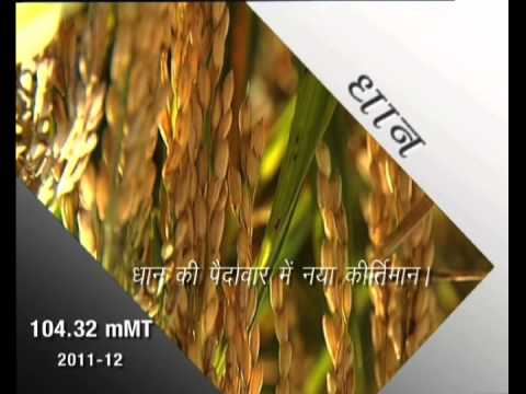RECORD FOOD GRAIN PRODUCTION IN COUNTRY  20 SEC,HINDI