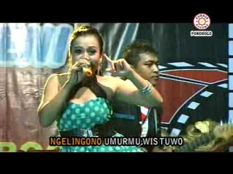 download lagu ★ Live Dangdut Koplo 2015 ★ Citra Rawatama ★ gratis