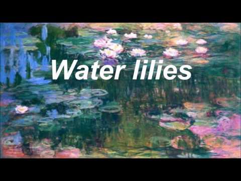 Black Water Lilies - AURORA - Lyrics