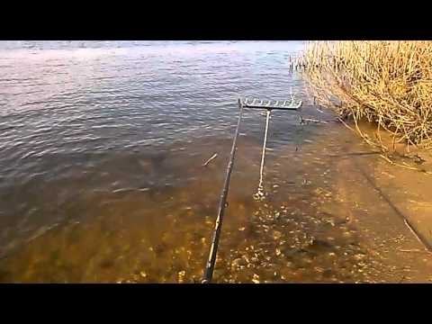 рыбалка в белоомуте на оке на фидер