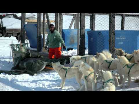 Climate Change impacts in Greenland, Stakeholder interveiws Ilulissat (Dansk)