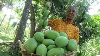 Mango Chutney Recipe by Grandma ❤ Village Life