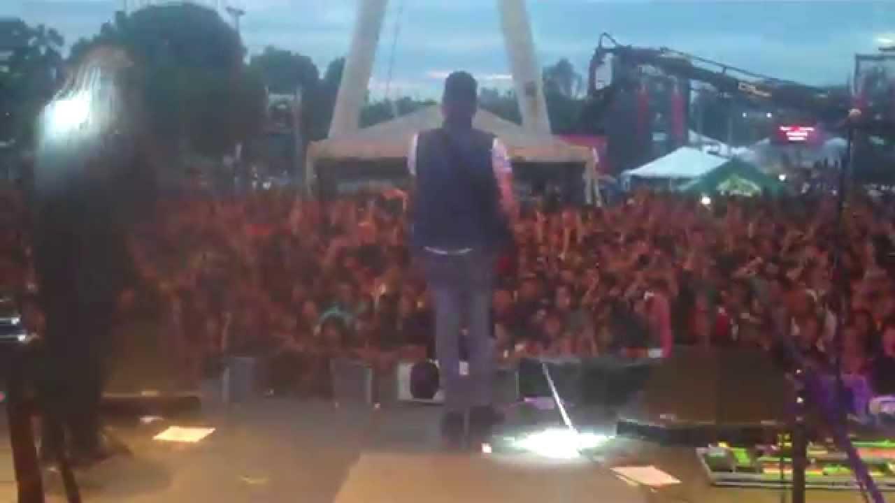 Rock And Vida 2014 Rock Por la Vida 2014