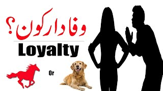 Loyalty | Who is the Most Loyal Animal in The World | The Story of A Loyal Dog | Urdu