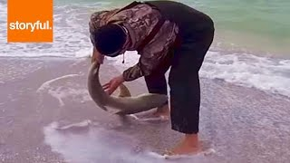 Sharks Hate Being Held By Tail
