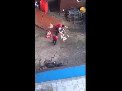 Video of alleged KFC employees washing off chicken pieces