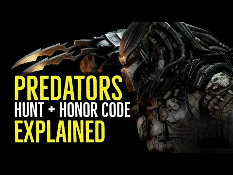 PREDATORS (HUNT + HONOR CODE Explained)