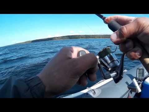 рыбалка советы бывалых торрент