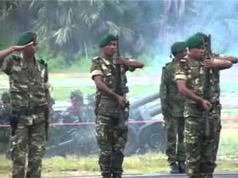PASUKAN TNI DAN PASUKAN TIMOR LESTE FALINTIL-FDTL DALAM UPACARA PENYAMBUTAN