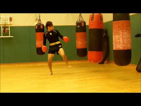 Practical Sanshou Strike and Combinations Rush Image 1