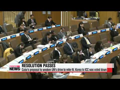 UN committee passes resolution calling for N. Korea′s referral to ICC for crimes