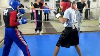 Amateur boxing sparring