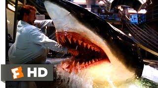 Deep Blue Sea  Jim Is Bitten Scene 310  Movieclips