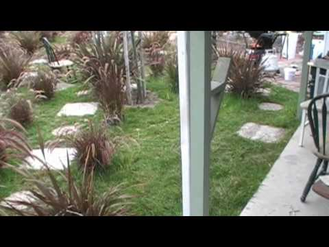 What Is a Backyard Water Drain? - Home Inspection Tips