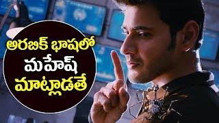 Spyder Movie Will Release Arabic Language | Mahesh Babu | Rakul Preeth Singh | AR murugadoss