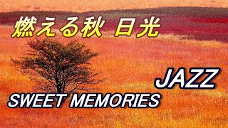 【燃える秋 NIKKO】SWEET MEMORIES JAZZ 絹針弘己写真集Japan landscape