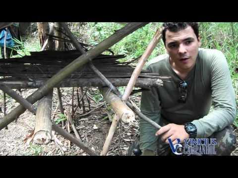 Desafio de Sobrevivência 01 part02-02