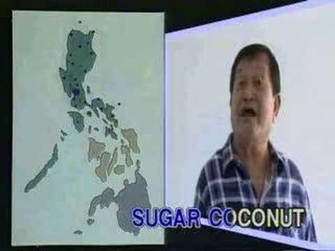 Yoyoy Villame - Philippine Geography
