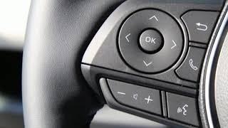 New 2019 Toyota RAV4 Bethesda, MD #77412